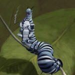 caterpillar-7
